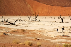 Deadvlie in Namibia