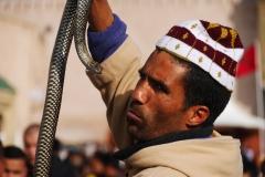 Marokko-Gauklerplatz in Meknes